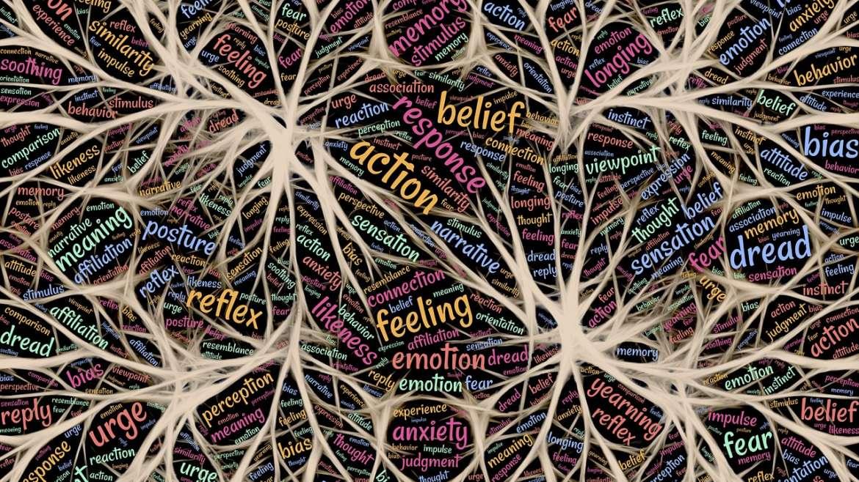 Neurosciences, de quoi parle-t-on ?